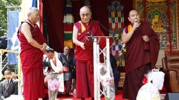 Dalai 1 web