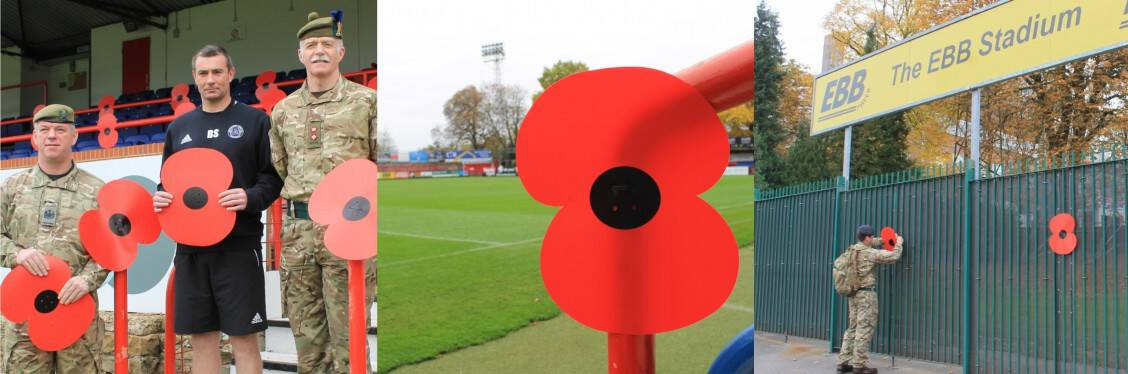 Poppy Appeal montage